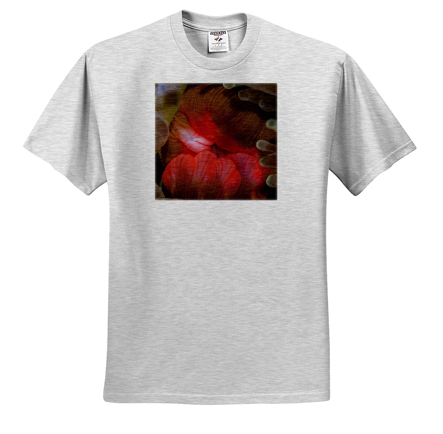 Underwater ts/_314017 3dRose Danita Delimont Close-up of Anemone Mouth - Adult T-Shirt XL Fiji