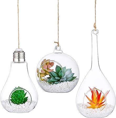 "Garden /"" Outdoor 3 Pcs Hanging Glass Plant Terrarium"