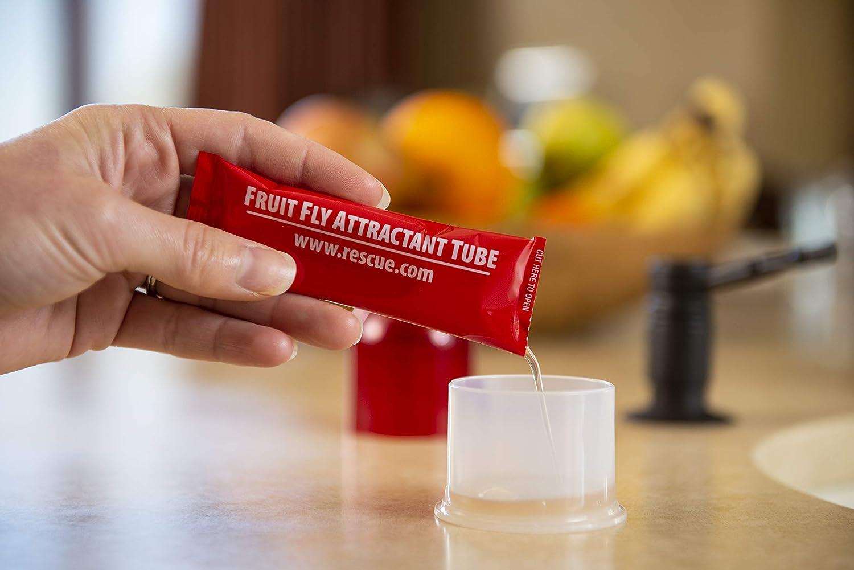 Amazon.com : RESCUE! Non-Toxic Reusable Fruit Fly Trap, 2 Pack : Garden &  Outdoor