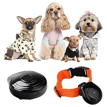 xiaok Song® Digital Perros Collar cámara grabadora de vídeo vigilancia Monitor para perros gatos Cachorros
