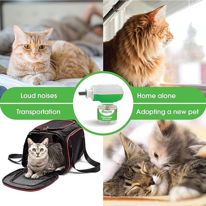 Genutri Cat Calming Diffuser Effective Pheromone Calming Treats Diffuser For Cats Durable High Quality Calming Diffuser Only Diffuser Head Amazon Ca Pet Supplies