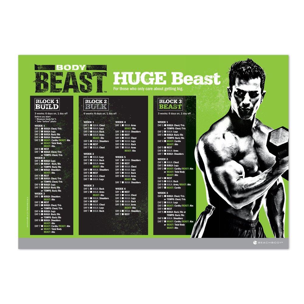 Body Beast DVD Workout - Base Kit by Beachbody (Image #4)
