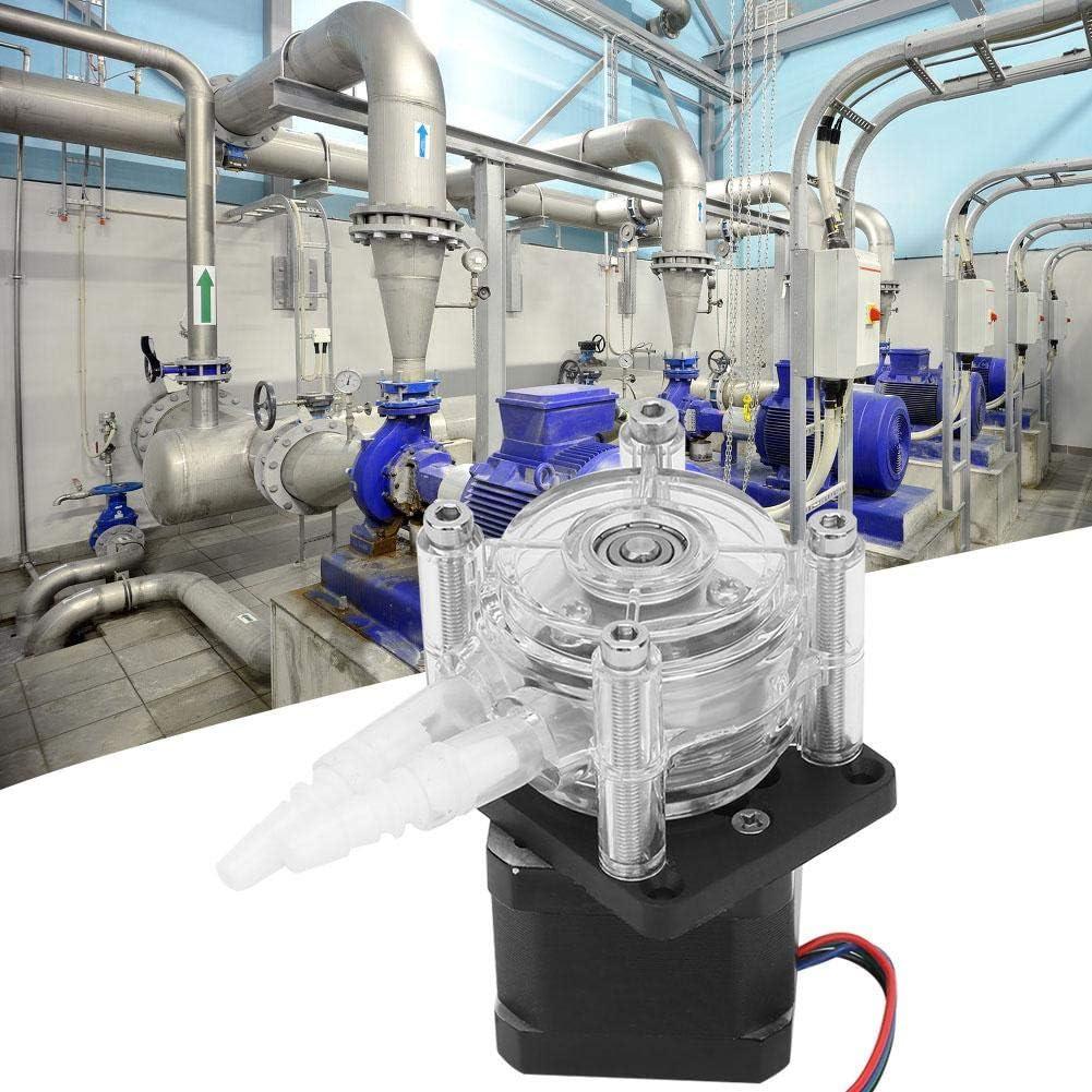 Pangding Vacío de Tubo de Bomba peristáltica de Motor Paso a Paso de Gran Flujo para Agua analítica de Laboratorio de Acuario 6-30V