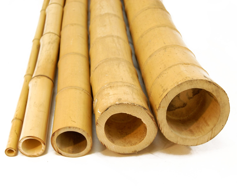 Forever Bamboo 3'' x 8' Bamboo Poles Natural (5 Poles)
