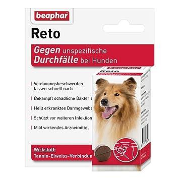 diarrea Pastillas - 30 Unidades Beaphar: Amazon.es: Productos para mascotas