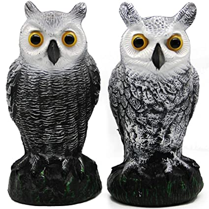 bc5f6933a Amazon.com : Hausse 2 Pack Bird Scarecrow Fake Horned Owl Decoy, Nature  Enemy Pest Repellent for Outdoor Garden Yard : Garden & Outdoor