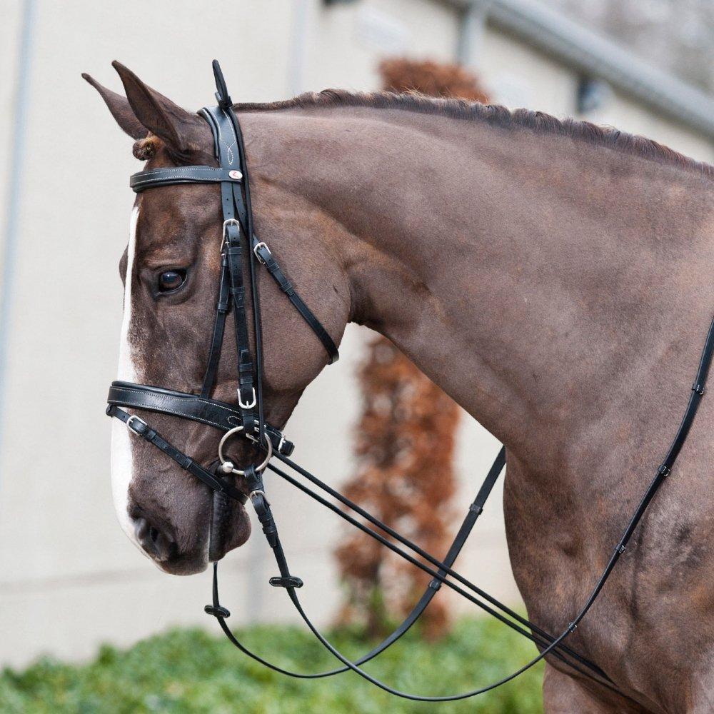 Struttura regolabile regolabile regolabile a seconda del collo del cavallo. , nero(BL), Taglia unica eb9be3