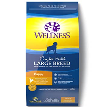What Is The Best Dog Food for a Large Breed Dog? | Wellness Large Breed Complete Health Puppy Deboned Chicken, Brown Rice & Salmon Meal Recipe Dry Dog Food | Dogfood.guru