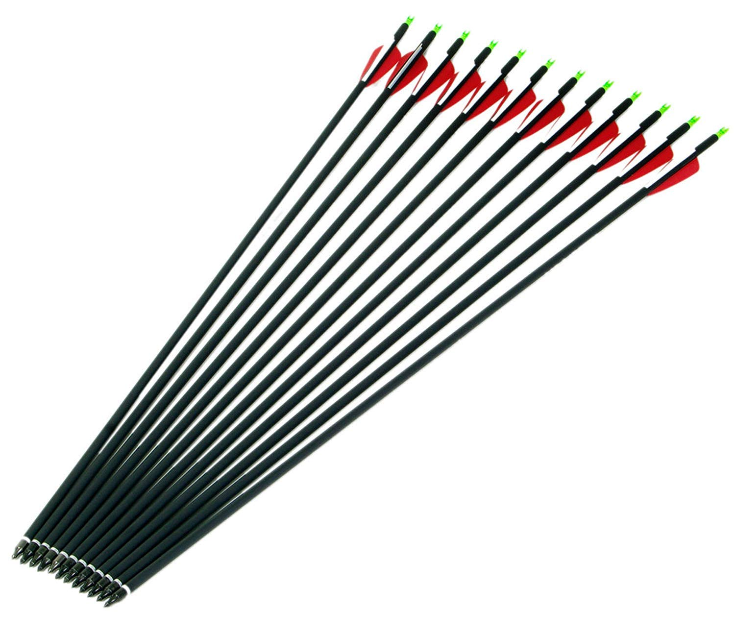 GPP Archery Carbon 30-Inch Targeting//Hunting Arrows Field Points Replaceable Tips 12 Pack Recuve Bow /& Compound Bow