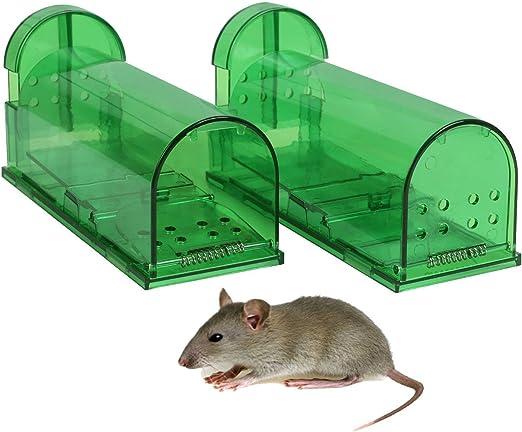 Aookey Ratoneras Ningunos Ratones de la Captura de la Muerte Vivos, Reutilizable y Fácil de Usar la Trampa Snap de la Rata Insecticida, Verde: Amazon.es: Jardín