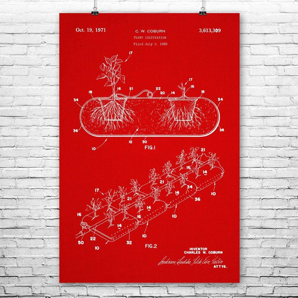 Hydroponic Planter Poster Print Greenhouse Art Gardening Gift Grow House Art
