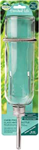 Oxbow Enriched Life Chew-Proof 16 oz Glass Water Bottle for Small Animals