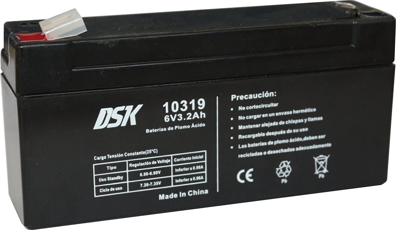 DSK 10319 Bateria, Plomo Ácido, Negro