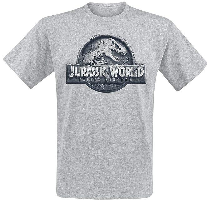 Jurassic Park Jurassic World - Fallen Kingdom Camiseta Gris/Melé XXL: Amazon.es: Ropa y accesorios