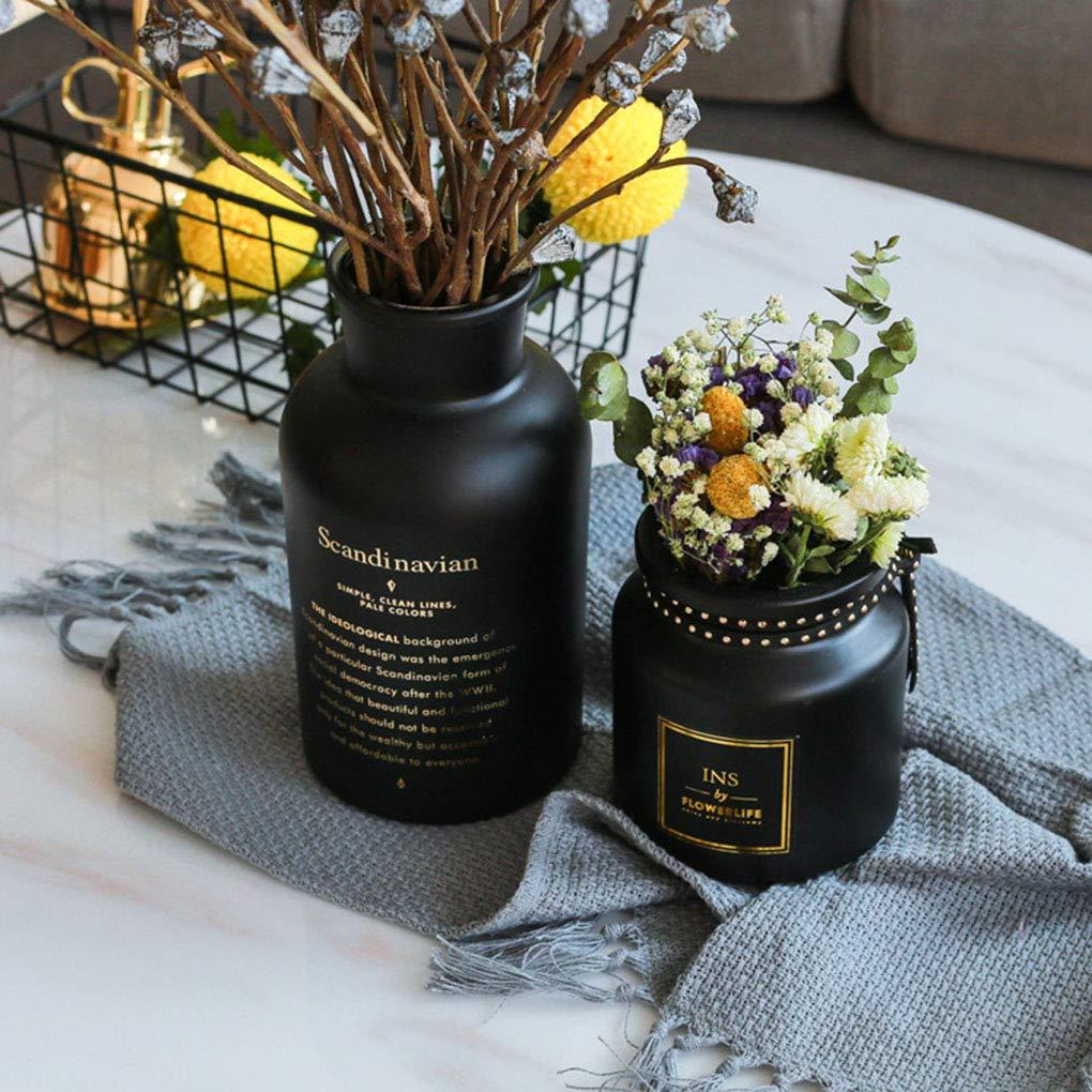 fish Nord Europa Style Frosted Glass Flower Vase Bianco Nero Holder Soggiorno Camera da Letto della Decorazione della casa