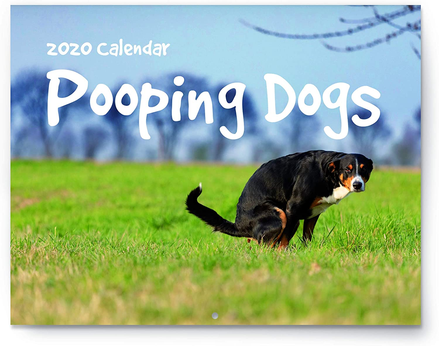 """Pooping Dogs Calendar - 2020 Wall Calendar - Large 11"""" x 17"""" When Open - Funny Gag Gift for Dog Lovers - Joke Present with Beautiful Photos of Dogs Pooping"""