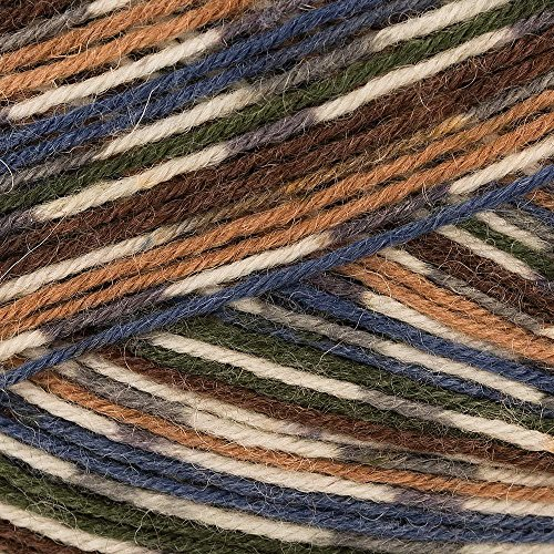 West Yorkshire Spinners Signature 4 Ply Country Birds 862 Mallard