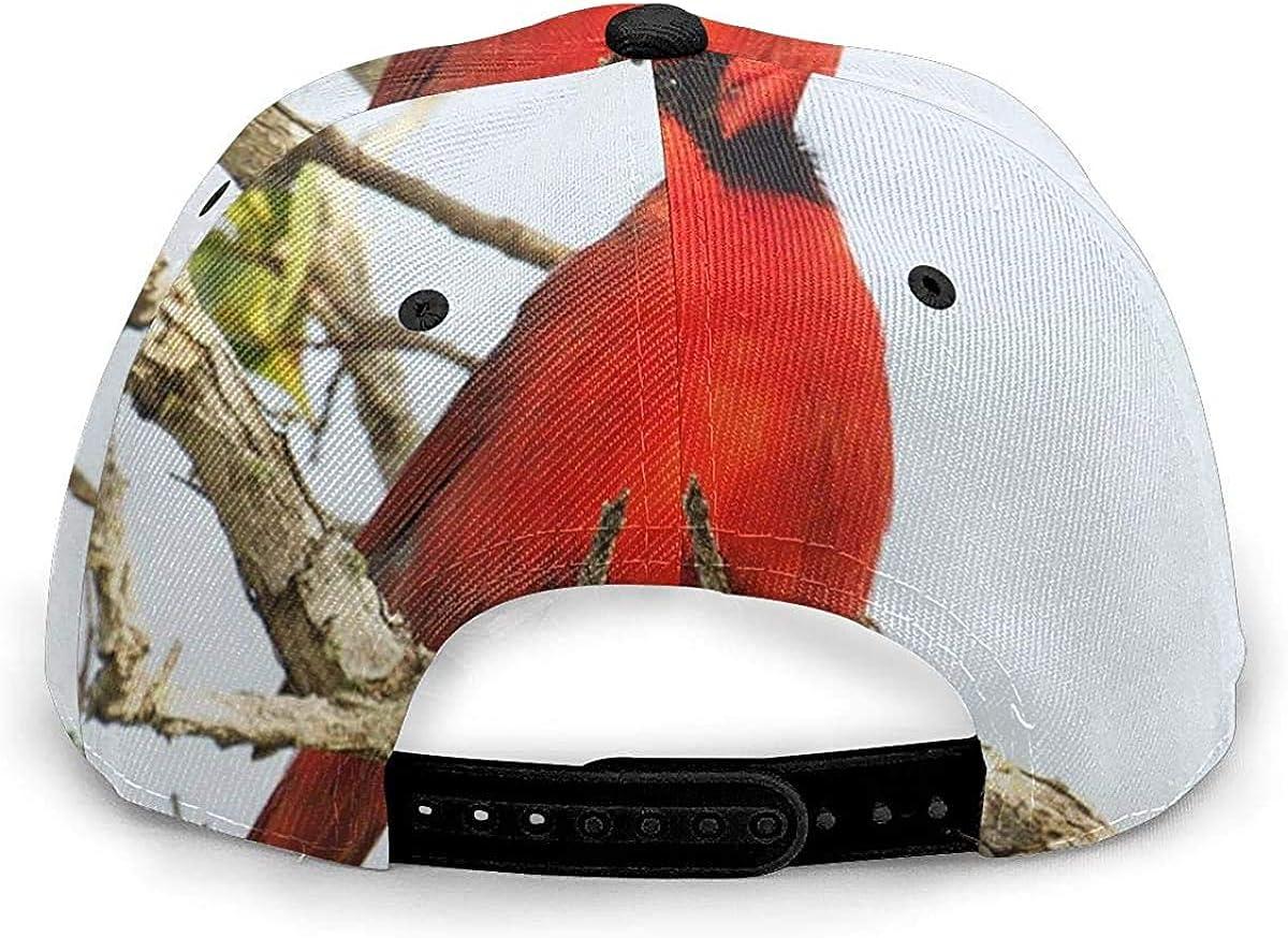Northern Cardinal Bird Lightweight Unisex Baseball Caps Adjustable Breathable Sun Hat for Sport Outdoor