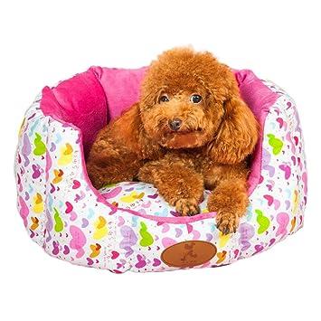 bwiv colores animales mascotas Caseta para gato y perro cojín cama sofà Cálido Frío Invierno Verano Lavable 2 formatos: Amazon.es: Hogar
