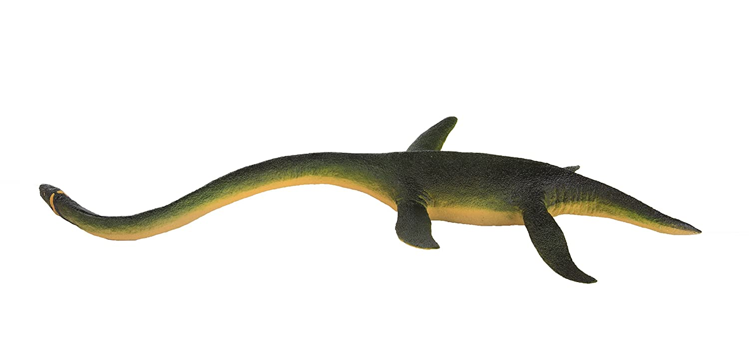 Realistic Individually Hand-Painted Toy Figurine Model For Ages 3 And Up 302429 Quality Construction from Phthalate and Lead-Free Materials Safari Ltd Wild Safari Elasmosaurus