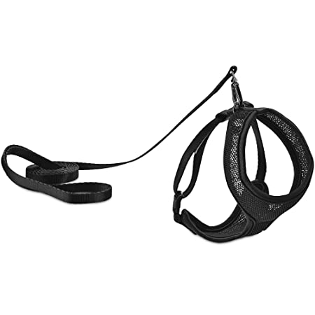 Pet Supplies Good2go Black Mesh Cat Harness Lead Set Standard