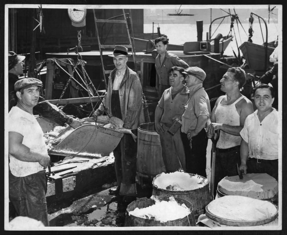 1950foto con un peso de peces Unloaded forma Dragger Nautilus en Fulton mercado de pescado, con cuchara báscula/telegrama de mundo y de sol fotográfico por F. Palumbo. Lugar: nueva York