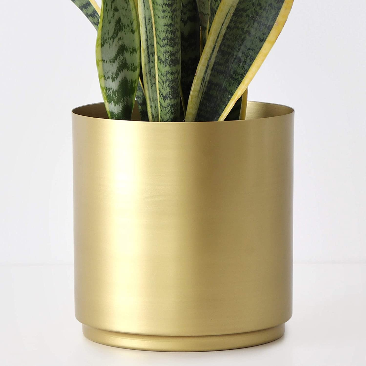 Large Brass Metal Planters Set Of Two Flower Pots Modern Gold Indoor Plant Pots 11 75 9 75 Perfect For Indoor Plants And House Plants 10 Inch Amazon Co Uk Garden Outdoors