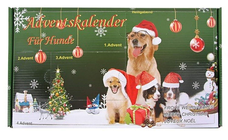 Calendrier de l'Avent pour Chiens Jouet pour chien Noë l Leitner