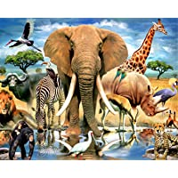 5D Diamond Painting DIY Full Drill Rhinestone Embroidery for Wall Decoration Animals 12X16 inches
