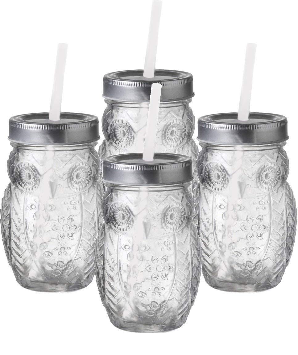 誠実 Circleware Jar Circleware Hoot 4 PieceフクロウMason Jar Set 4 B076949WGG, 結城郡:3e36531b --- beyonddefeat.com