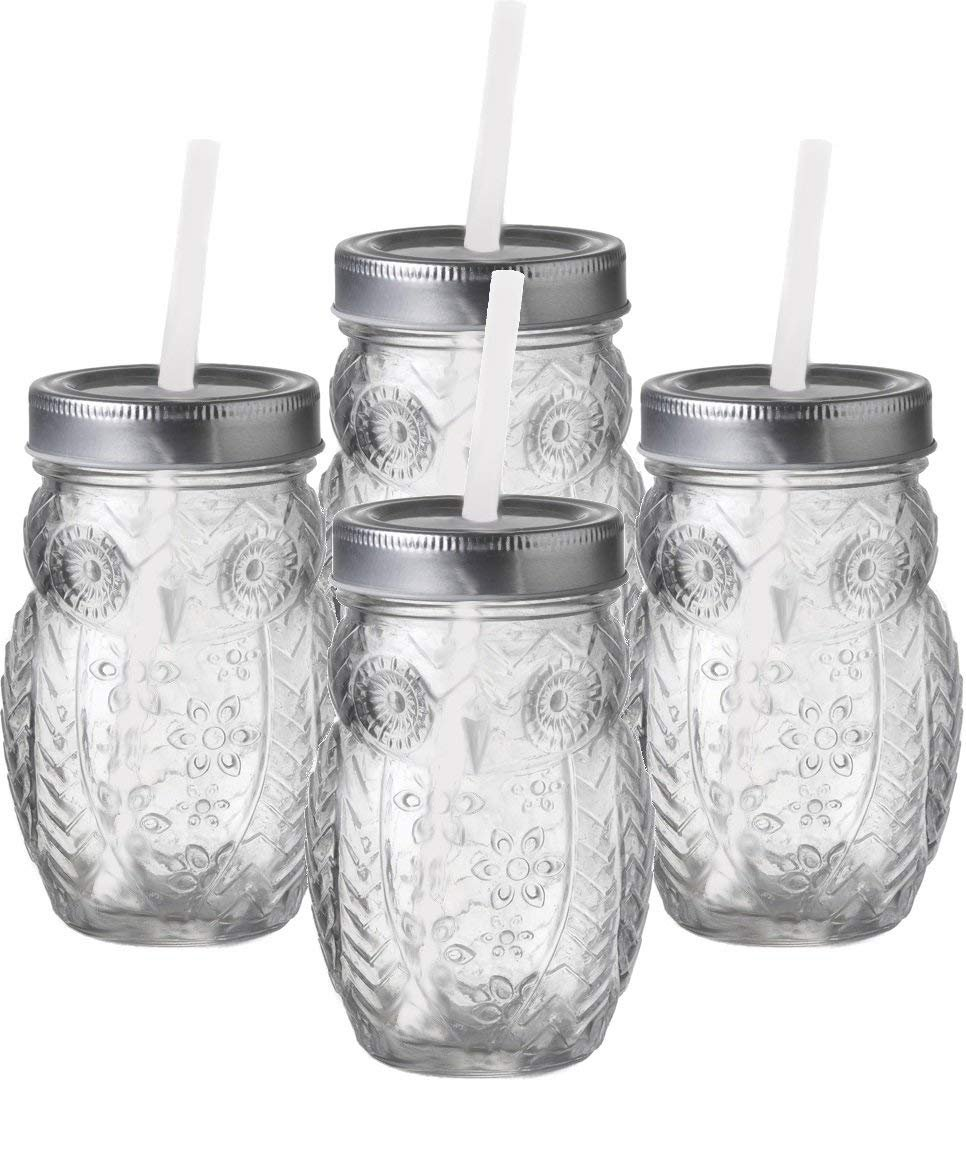 Circleware 69033 Hoot Owl Yorkshire Mason Jar Drinking Glasses with Metal Lids and Hard Straws 15 Oz, Glassware for Water, Beer, Wine, Liquor, Iced Tea Punch and Best Beverage, 15oz, Clear