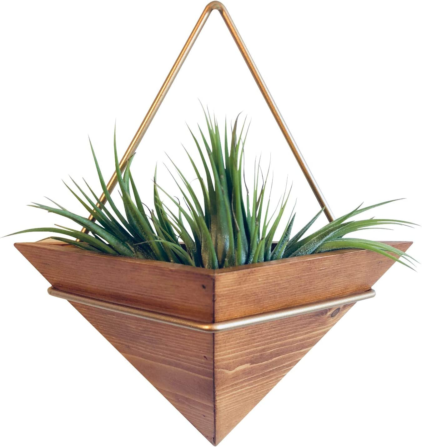 Artisanal Geometric Air Plant Holder – Made From, Sustainably Sourced Wood – Minimalist Style & Easy­To­Hang Design – Ethical Geometric Wall Decor Air Plant