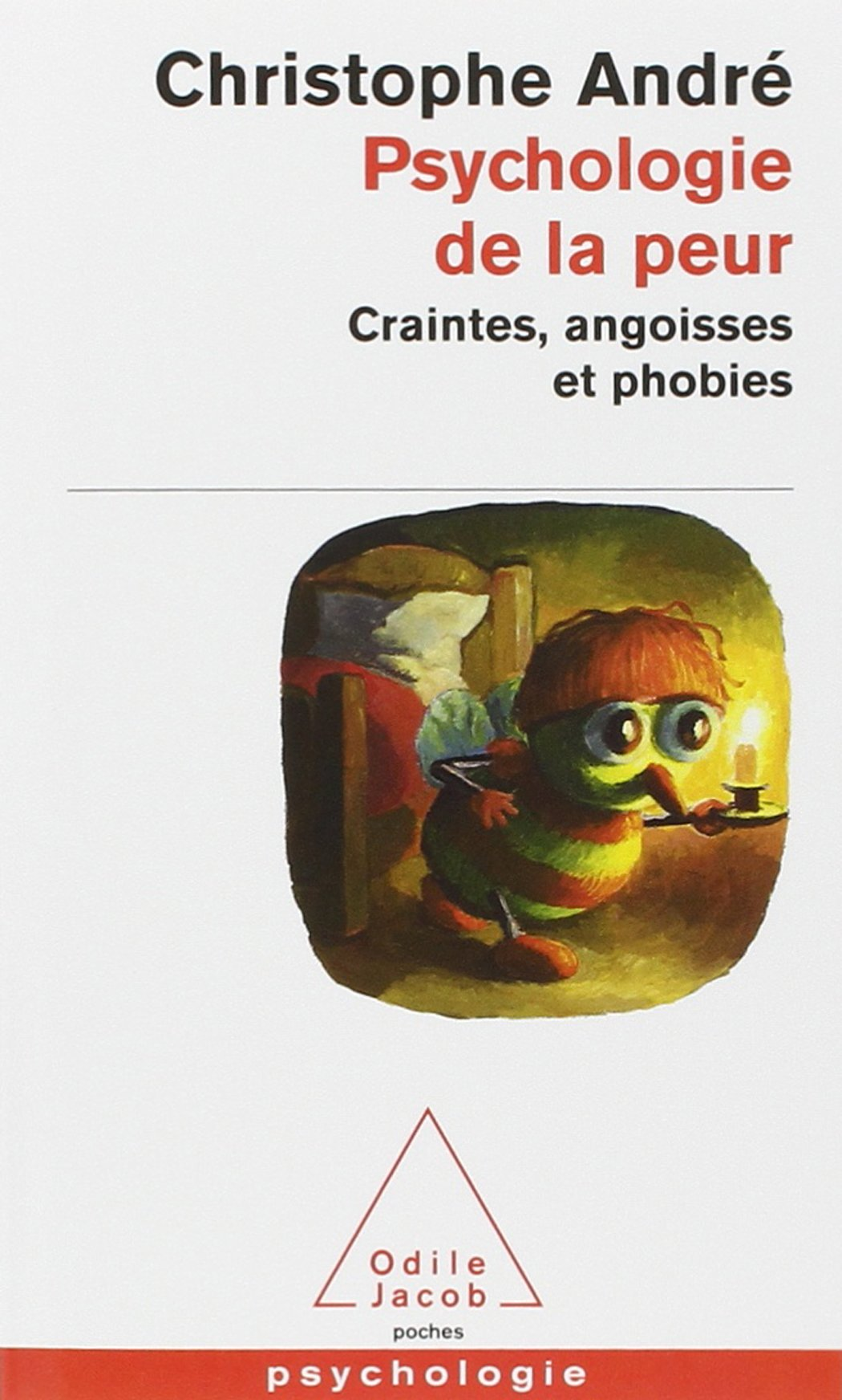 Amazon Fr Psychologie De La Peur Craintes Angoisses Et