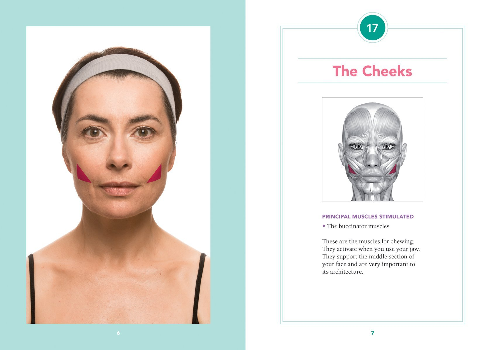 The 5-Minute Facial Workout: 30 Exercises for a Naturally ...