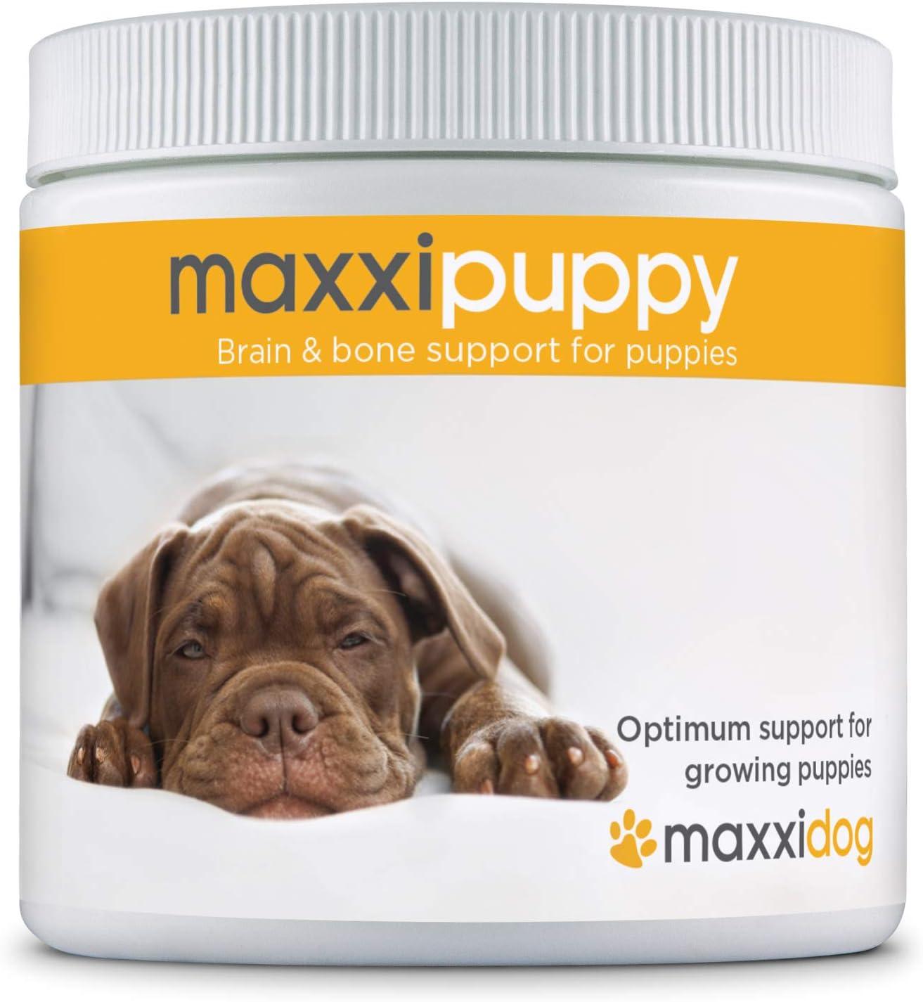 maxxipuppy