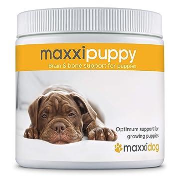 maxxidog - Suplemento Cachorros maxxipuppy para Cerebro y ...