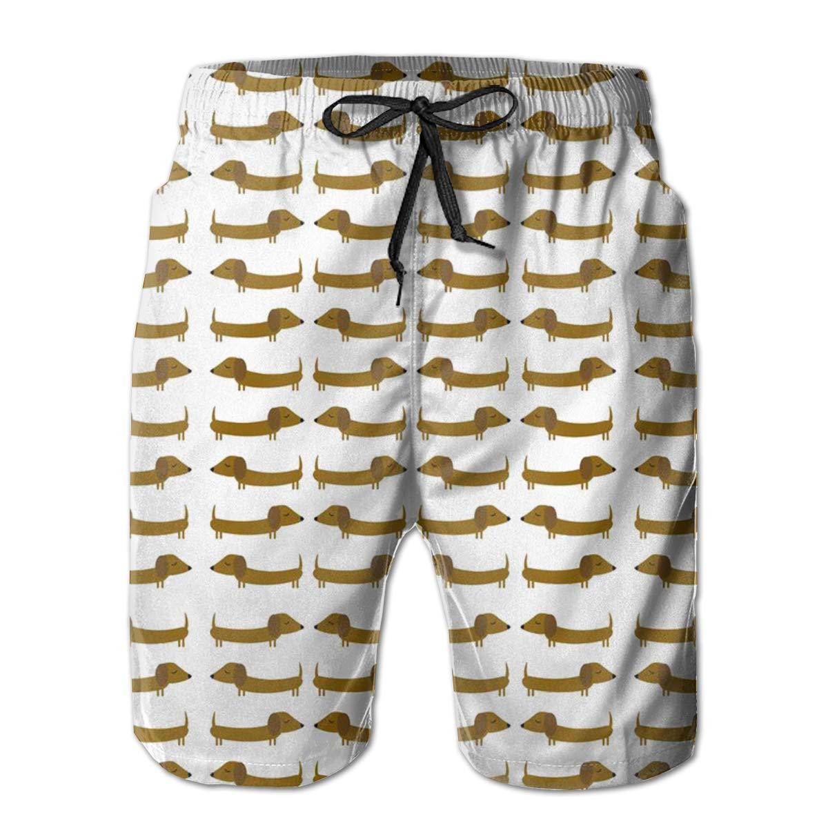 DHVJBC Mens Dachshund Dog Summer Holiday Quick-Drying Swim Trunks Beach Shorts Board Shorts
