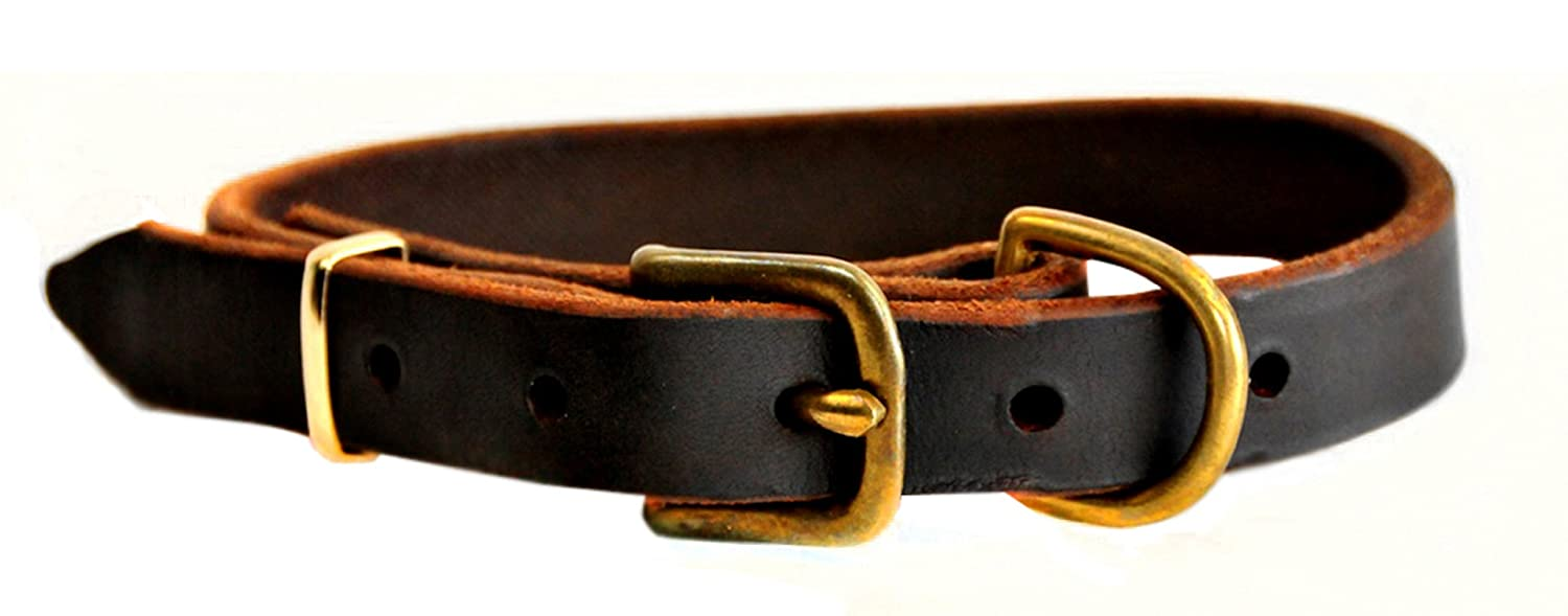 Dean and Tyler  B and B , Basic Leather Dog Collar with Solid Brass Hardware Brown Size 22 by 1-Inch Fits Neck 20-Inch to 24-Inch