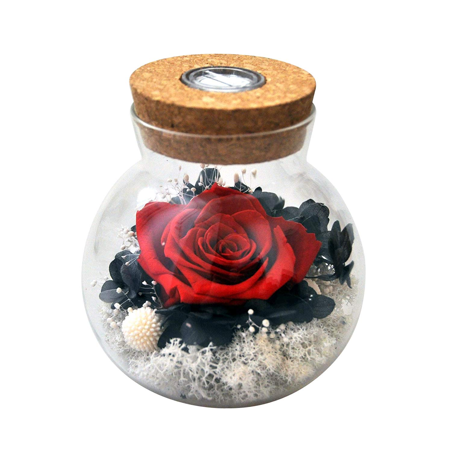 Preserved by Real Rose with Colorful led Mood light Wishing Bottle Eternal Flowers for Bedroom Party Table Decor Centerpieces Christmas Decorations Crafts Gifts for Women red