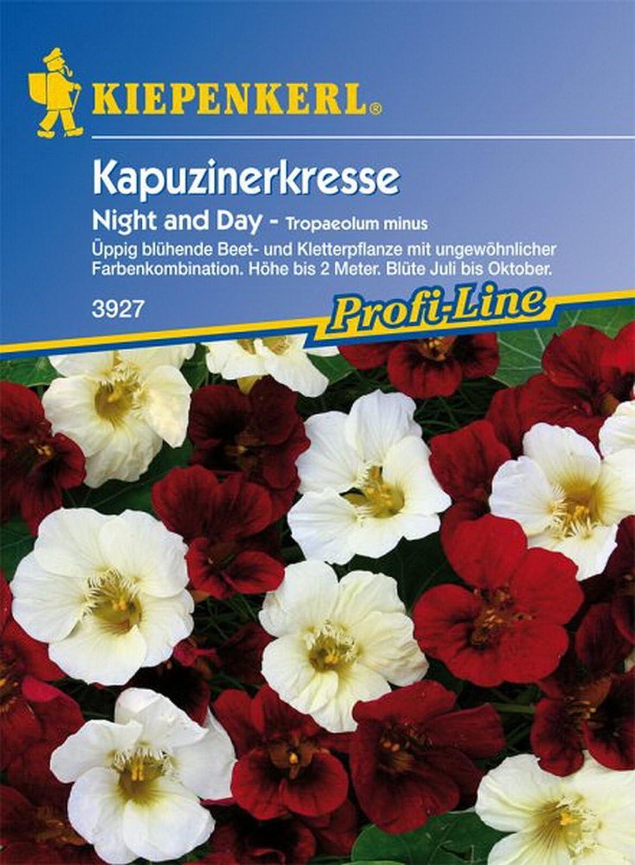 Kapuzinerkresse Night /& Day