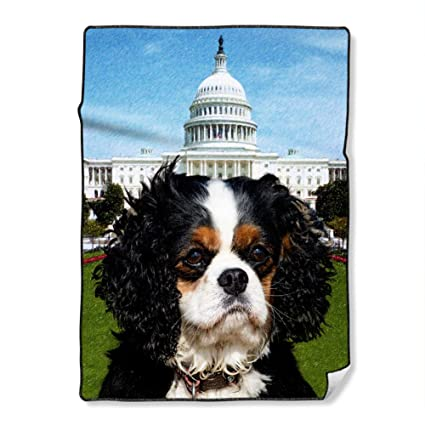 Image Unavailable. Image not available for. Color  NIWAHO Custom Blankets  with Designs Throws Cavalier King Charles Spaniel Dog ... df0db3b00