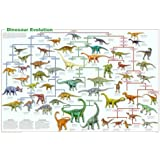 Amazon coolowlmaps world of the dinosaurs wall map poster dinosaur evolution educational science chart poster 36 x 24in gumiabroncs Images