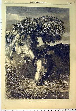 amazon 1862 頭の旧式な印刷物の女性の供給の馬麦わら帽子 歴史