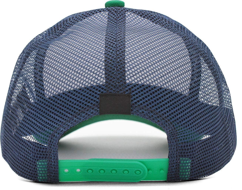 for Mens Womens Caps VEDOI Unisex Mesh Snapback Hat Dierks-Bentley