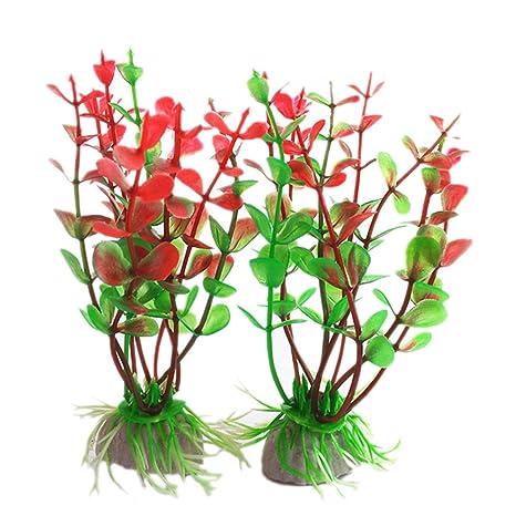 Healthy clubs Sana Clubes 5pcs Rojo Verde plástico Plantas decoración Base de cerámica Cartucho para Fish
