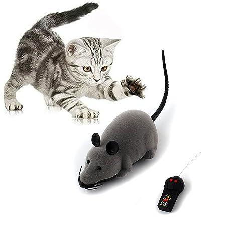 Juguete para ratas, Scoolr RC divertido mando a distancia inalámbrico ratón ratón, juguete para