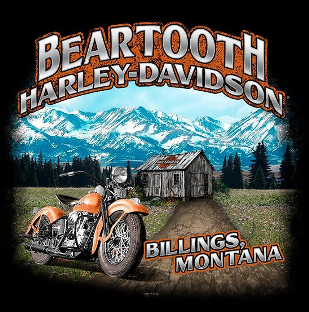 Harley-Davidson Mens Teal Brushed H-D T-Shirt