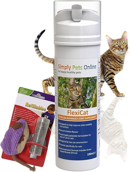 Simply Pets Online Complemento líquido para artritis gatera Plus Juguete de menta para gatos contiene mejillón verde: Amazon.es: Productos para mascotas