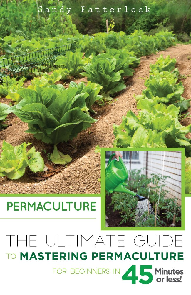 Permaculture  The Ultimate Guide To Mastering Permaculture For Beginners In 45 Minutes Or Less   Permaculture   Permaculture For Beginners   Permaculture ...   Permaculture Techniques   English Edition