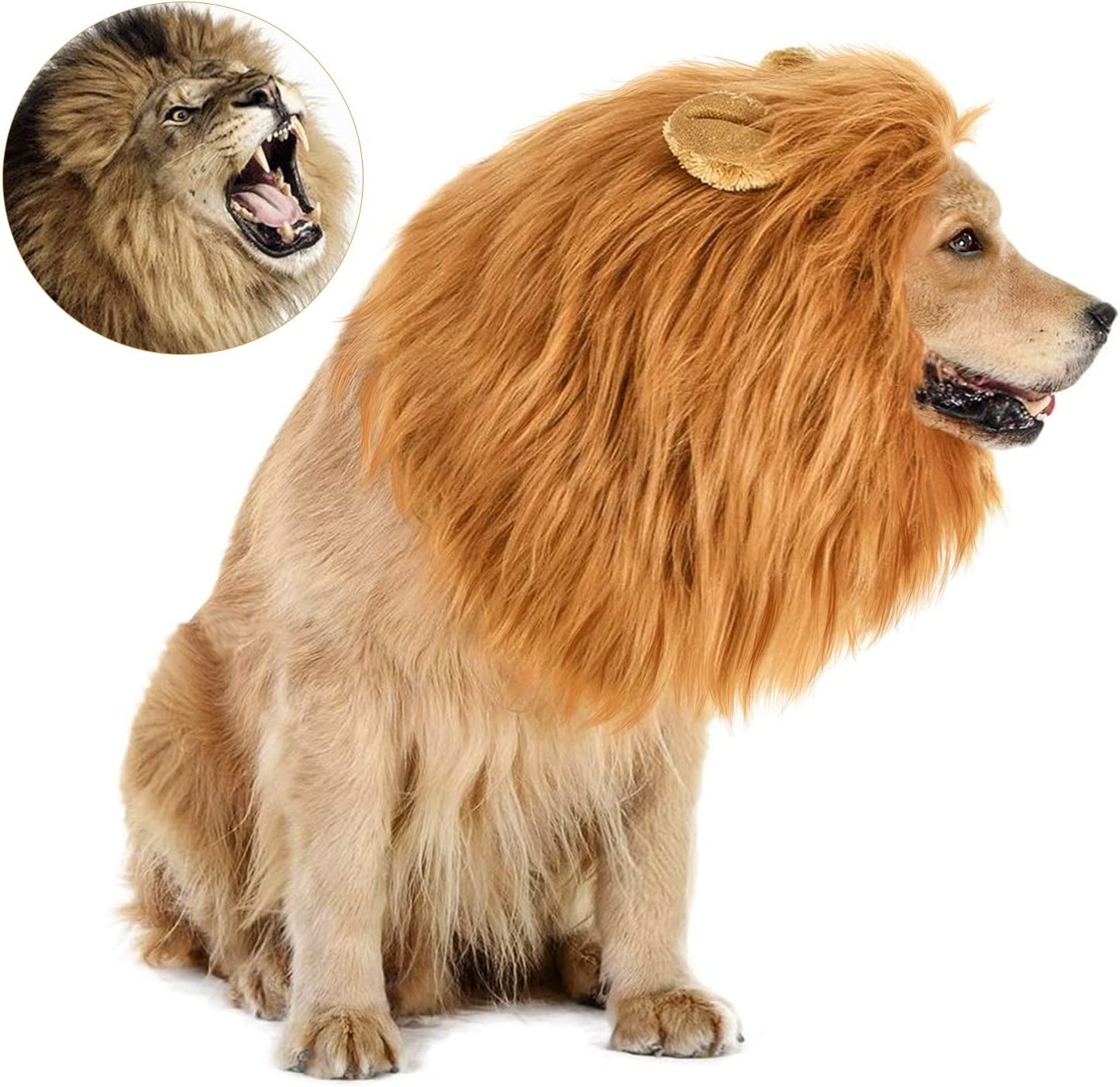 GALOPAR Pet Costume, Dogs or Cats Outfits Beauty and The Beast Costume for Halloween Christmas Cosplay Parties Accessories